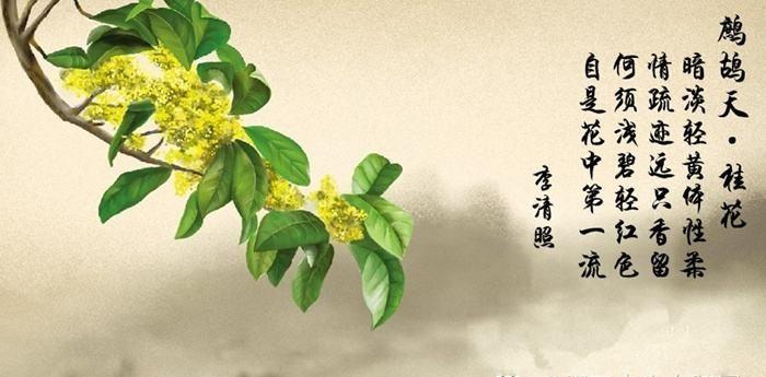 江淳:体悟金陵深秋的景致_图1-6