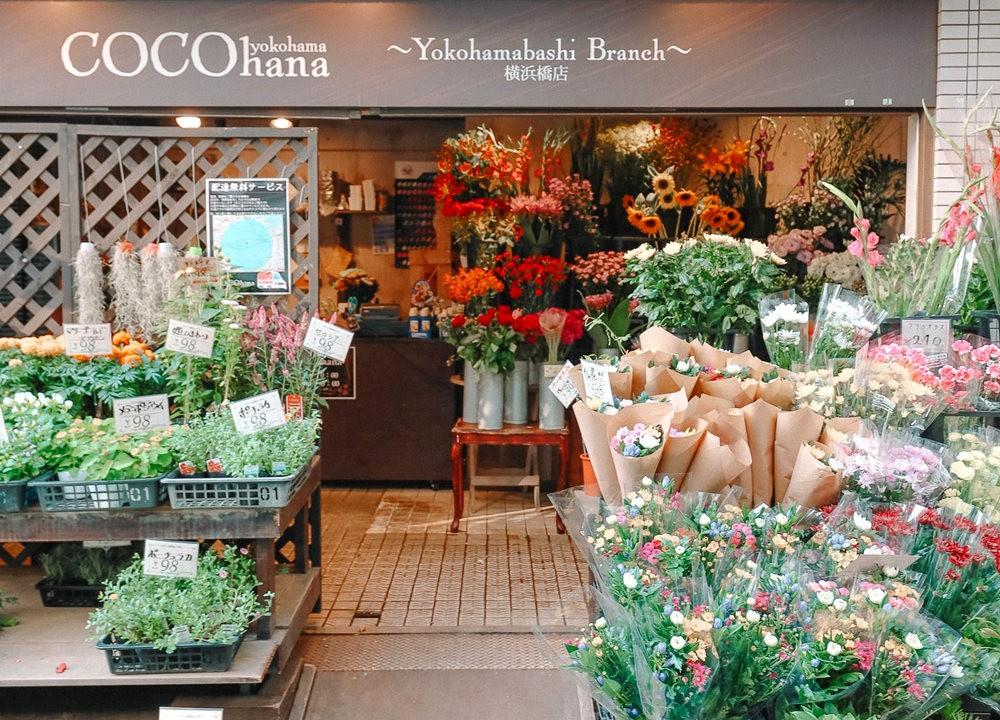在横滨探索_图1-9
