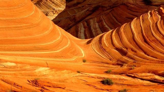 美国最美的地质奇观--南狼_图1-23
