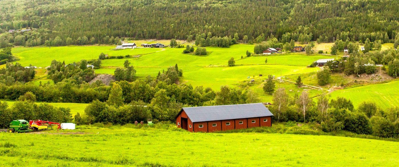北欧旅途,牛羊成群_图1-25
