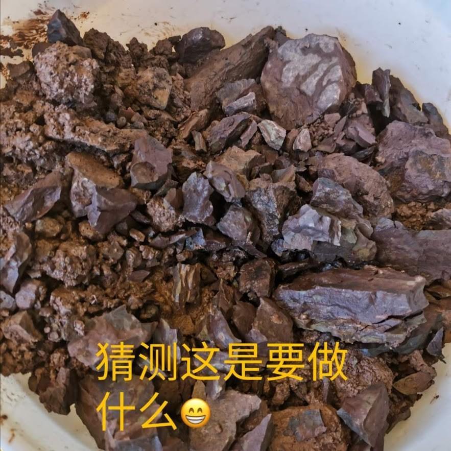 漢莊之秋2019_图1-21