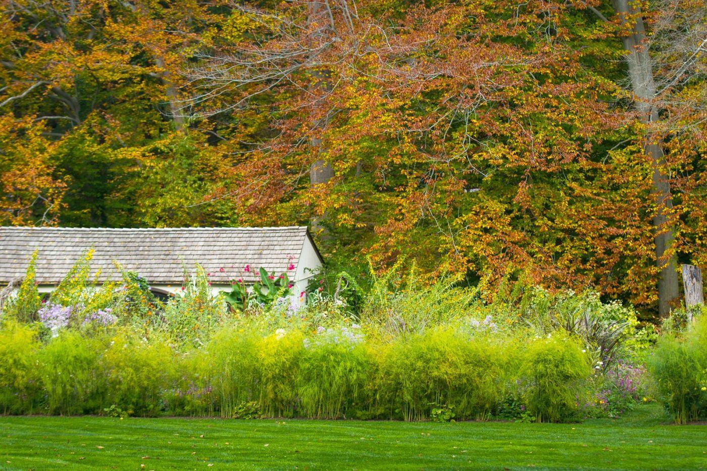 Chanticleer花园,季季有色彩_图1-3