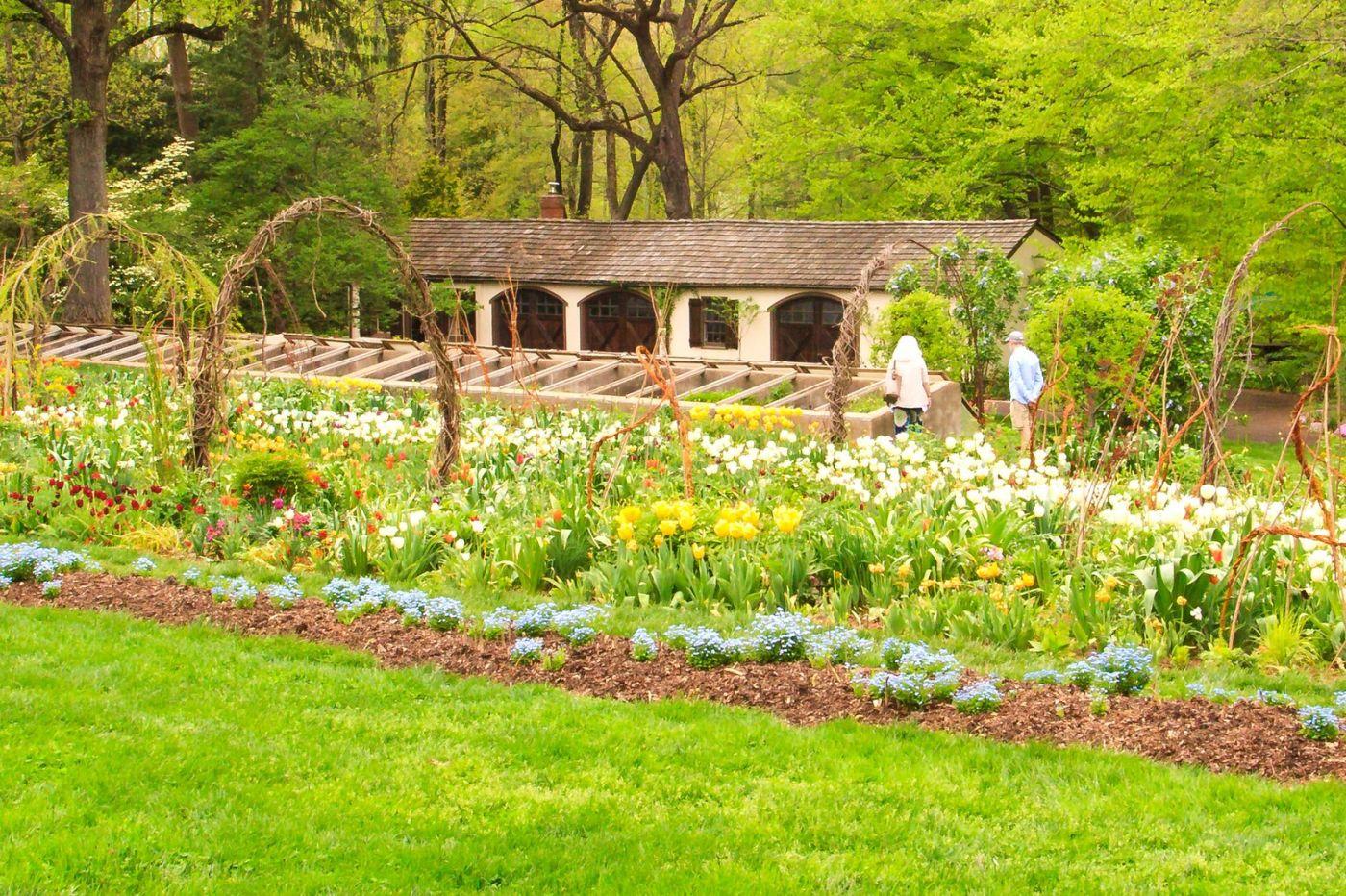Chanticleer花园,季季有色彩_图1-7