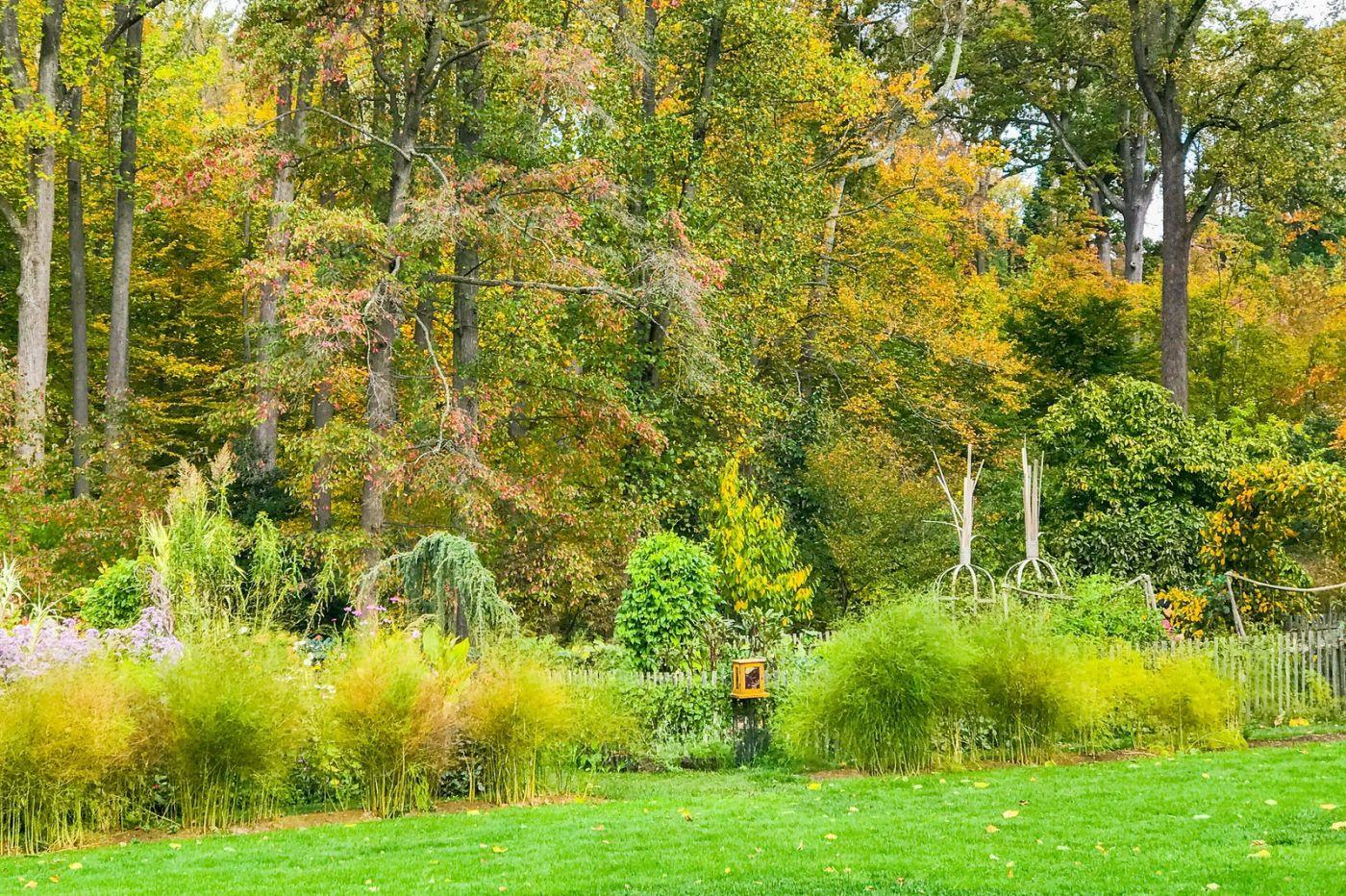 Chanticleer花园,季季有色彩_图1-12
