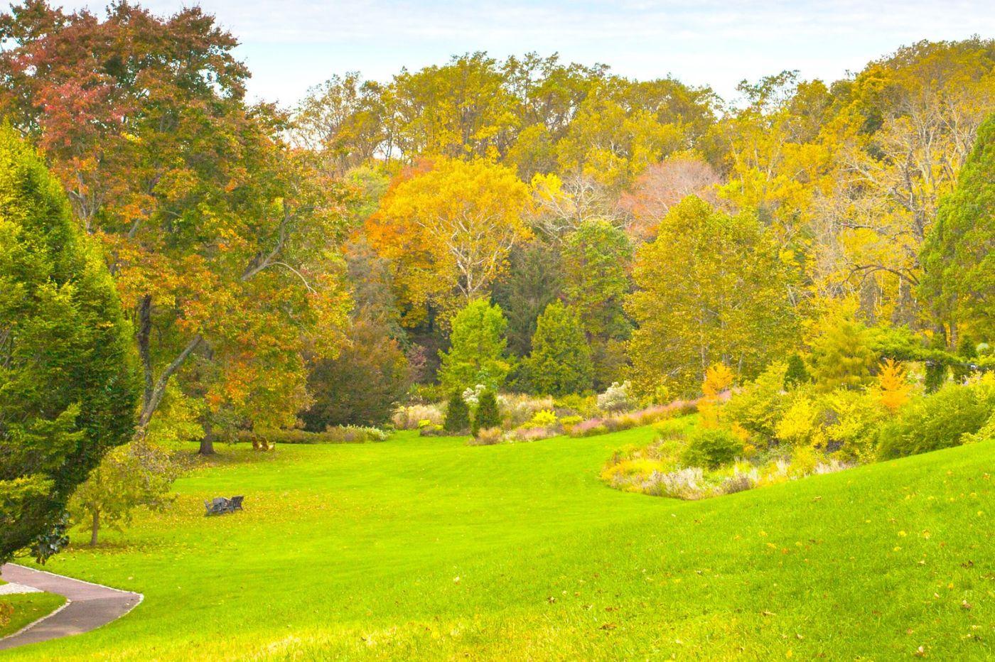 Chanticleer花园,季季有色彩_图1-11