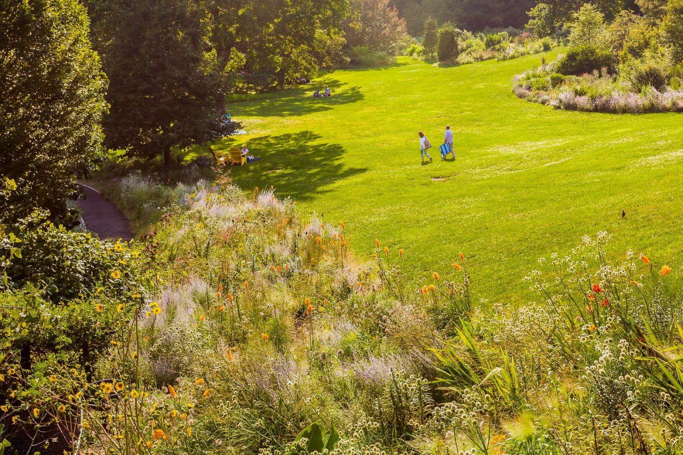 Chanticleer花园,季季有色彩_图1-10