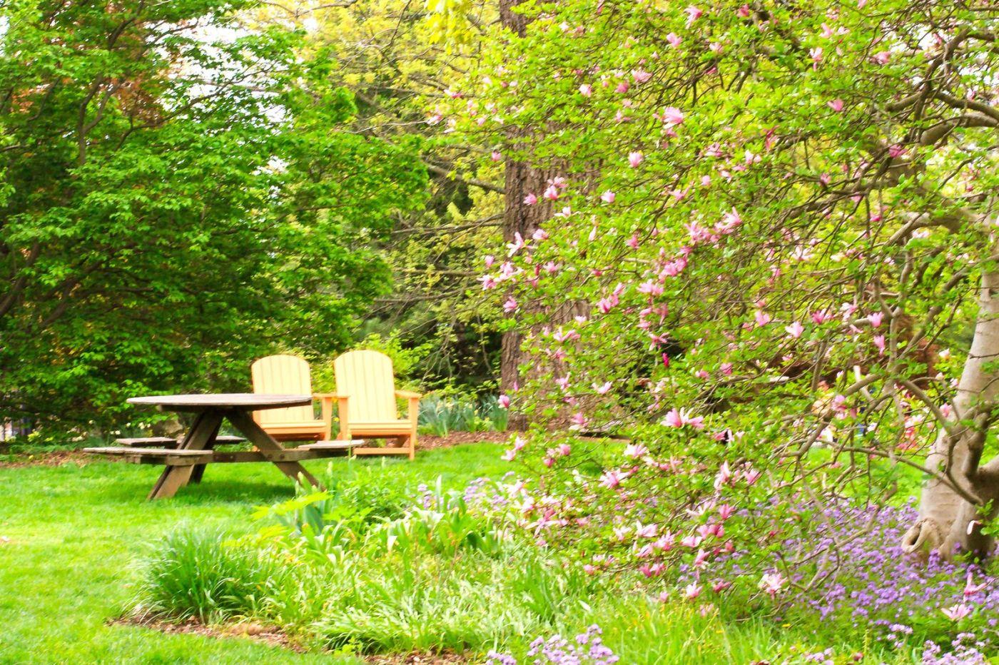 Chanticleer花园,季季有色彩_图1-13