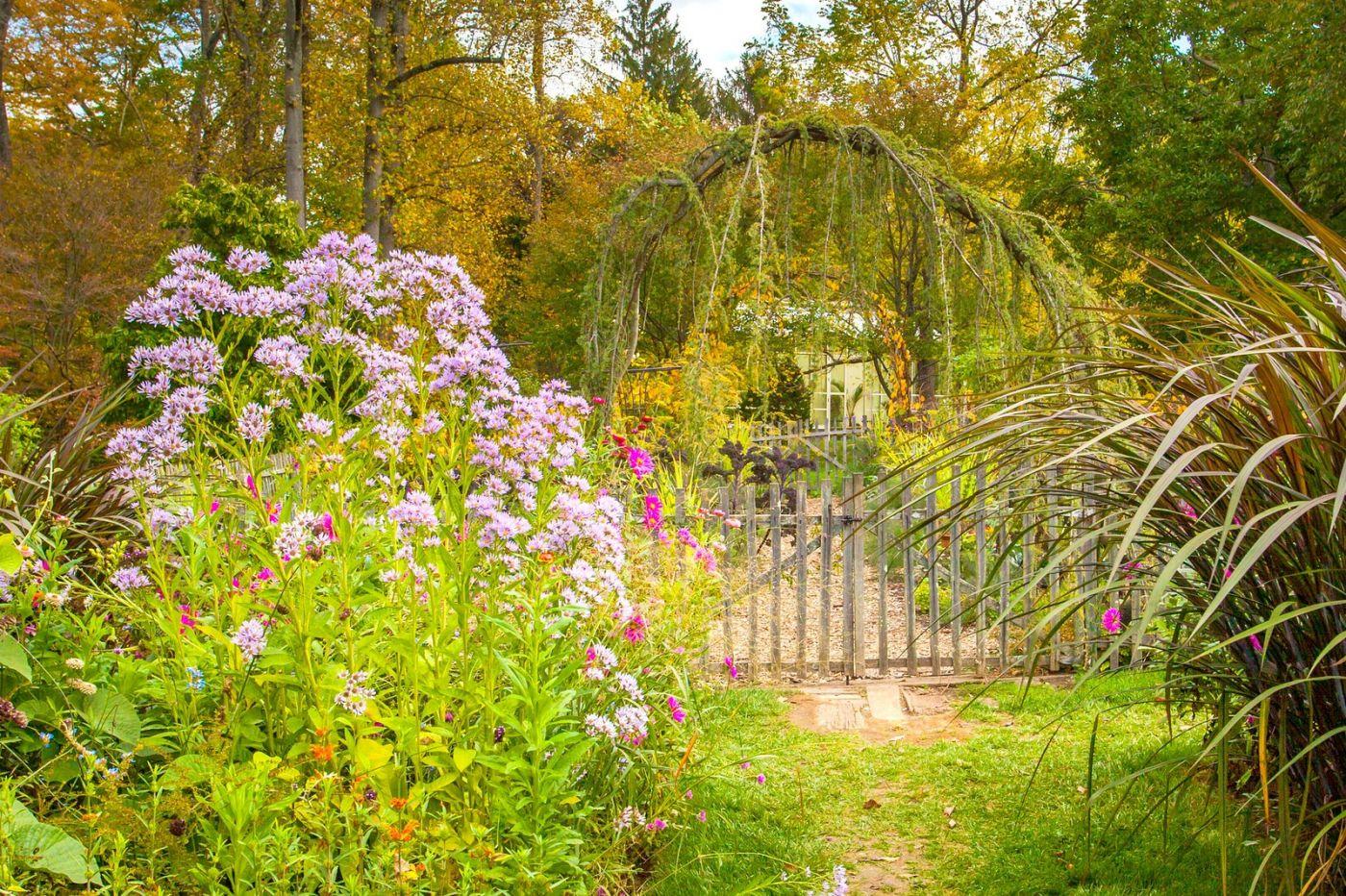 Chanticleer花园,季季有色彩_图1-16