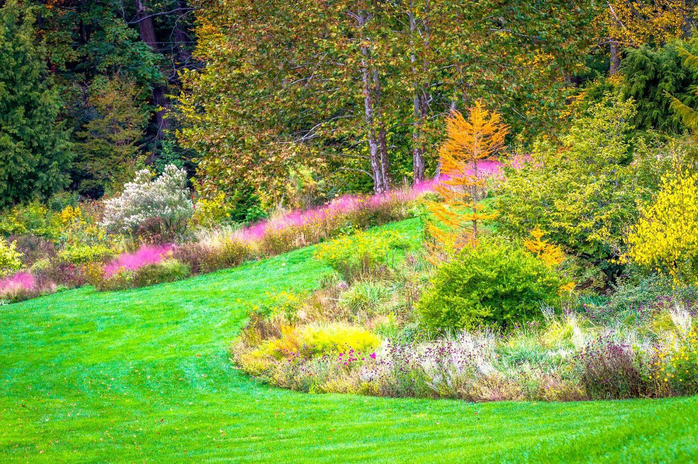 Chanticleer花园,季季有色彩_图1-19