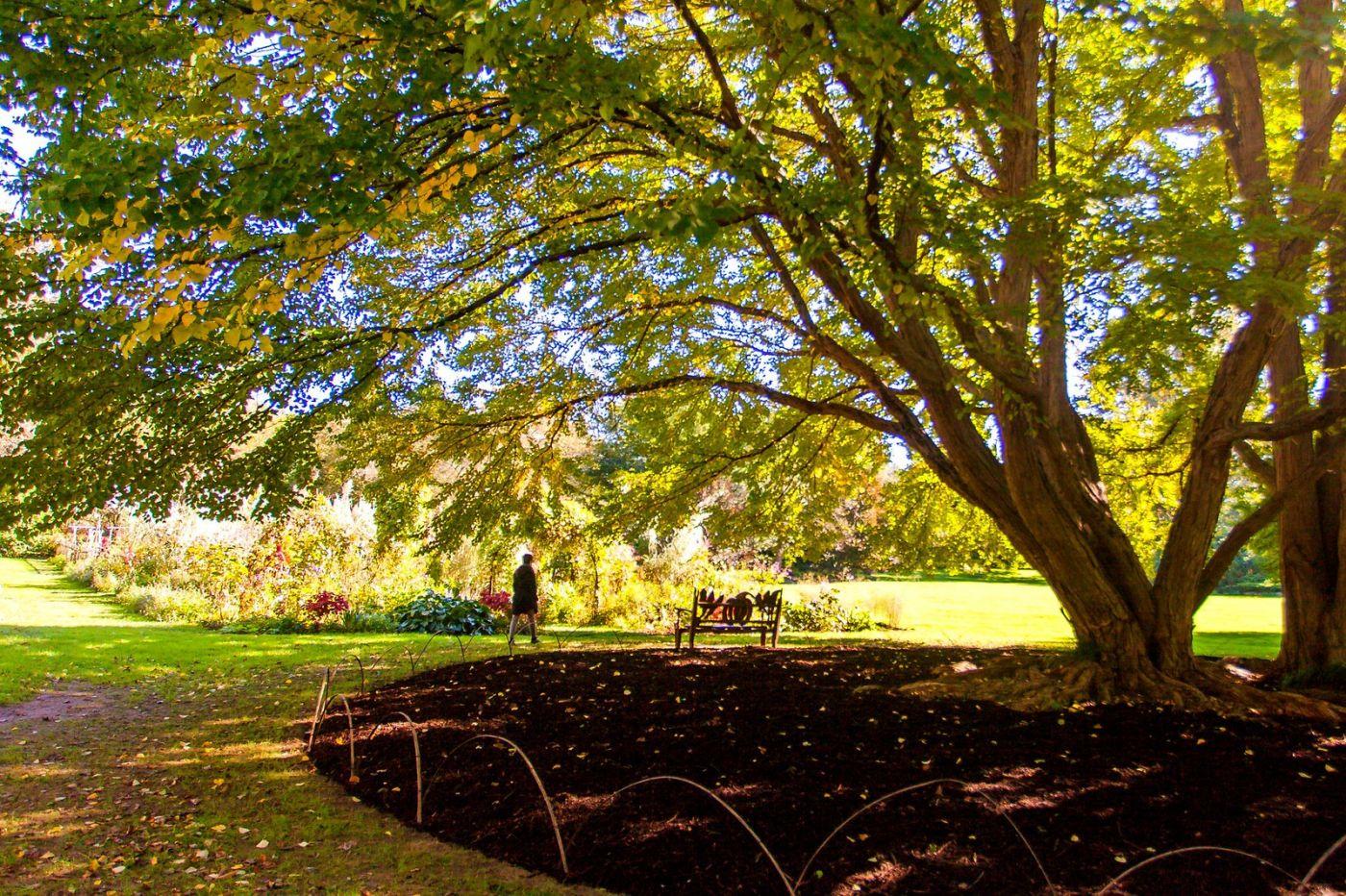 Chanticleer花园,季季有色彩_图1-23