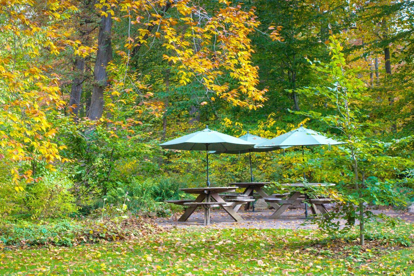 Chanticleer花园,季季有色彩_图1-24