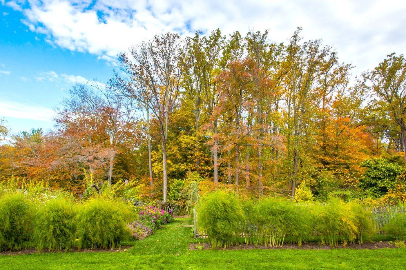 Chanticleer花园,季季有色彩_图1-27