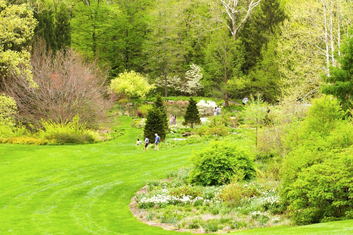 Chanticleer花园,季季有色彩_图1-25