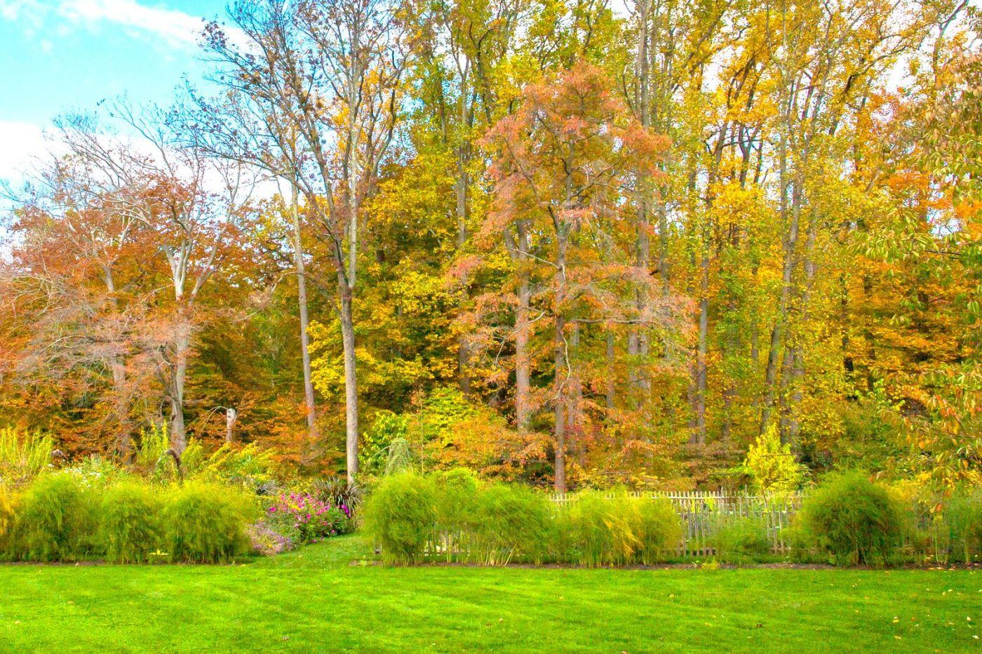 Chanticleer花园,季季有色彩_图1-30