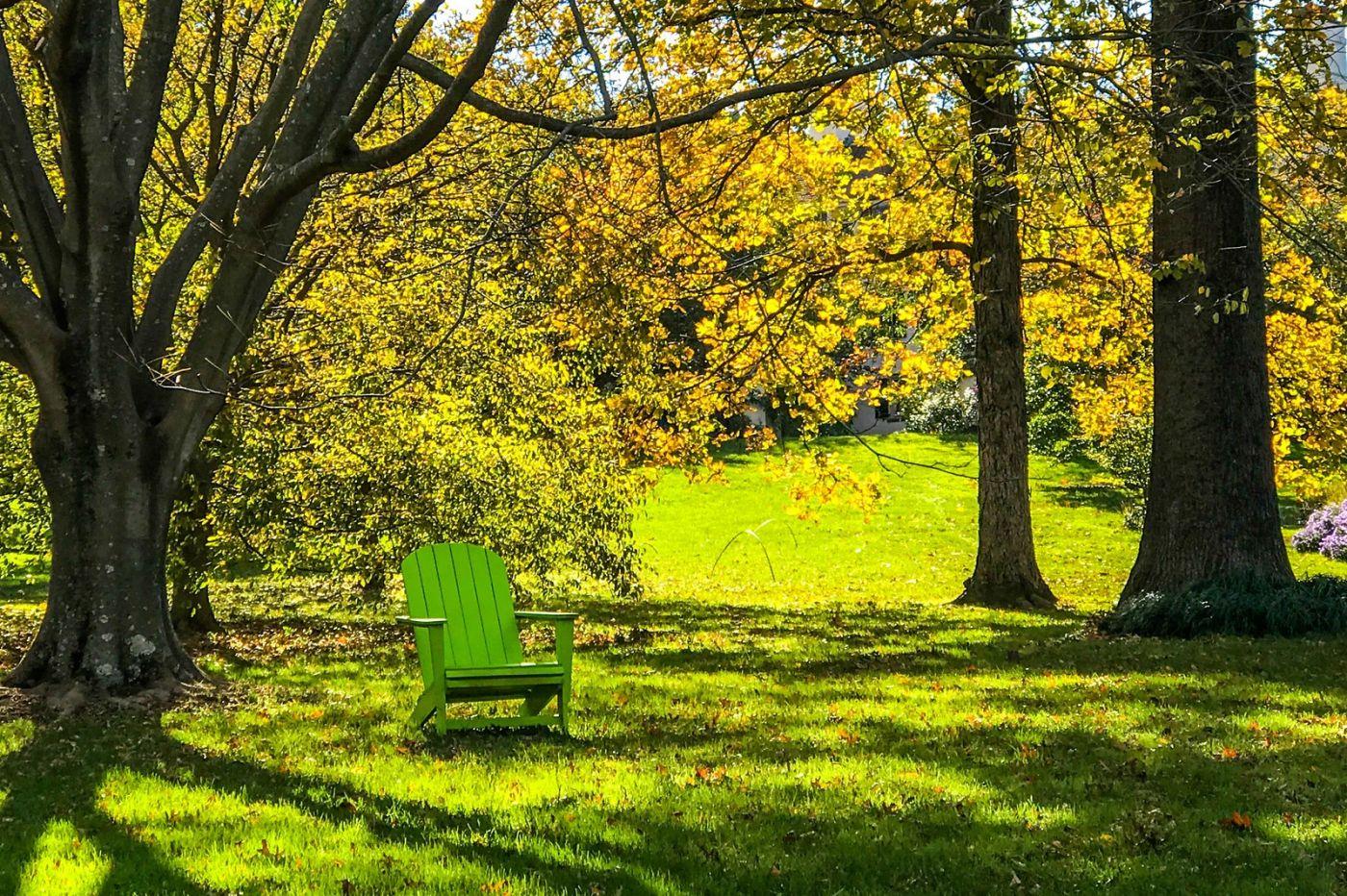 Chanticleer花园,季季有色彩_图1-31