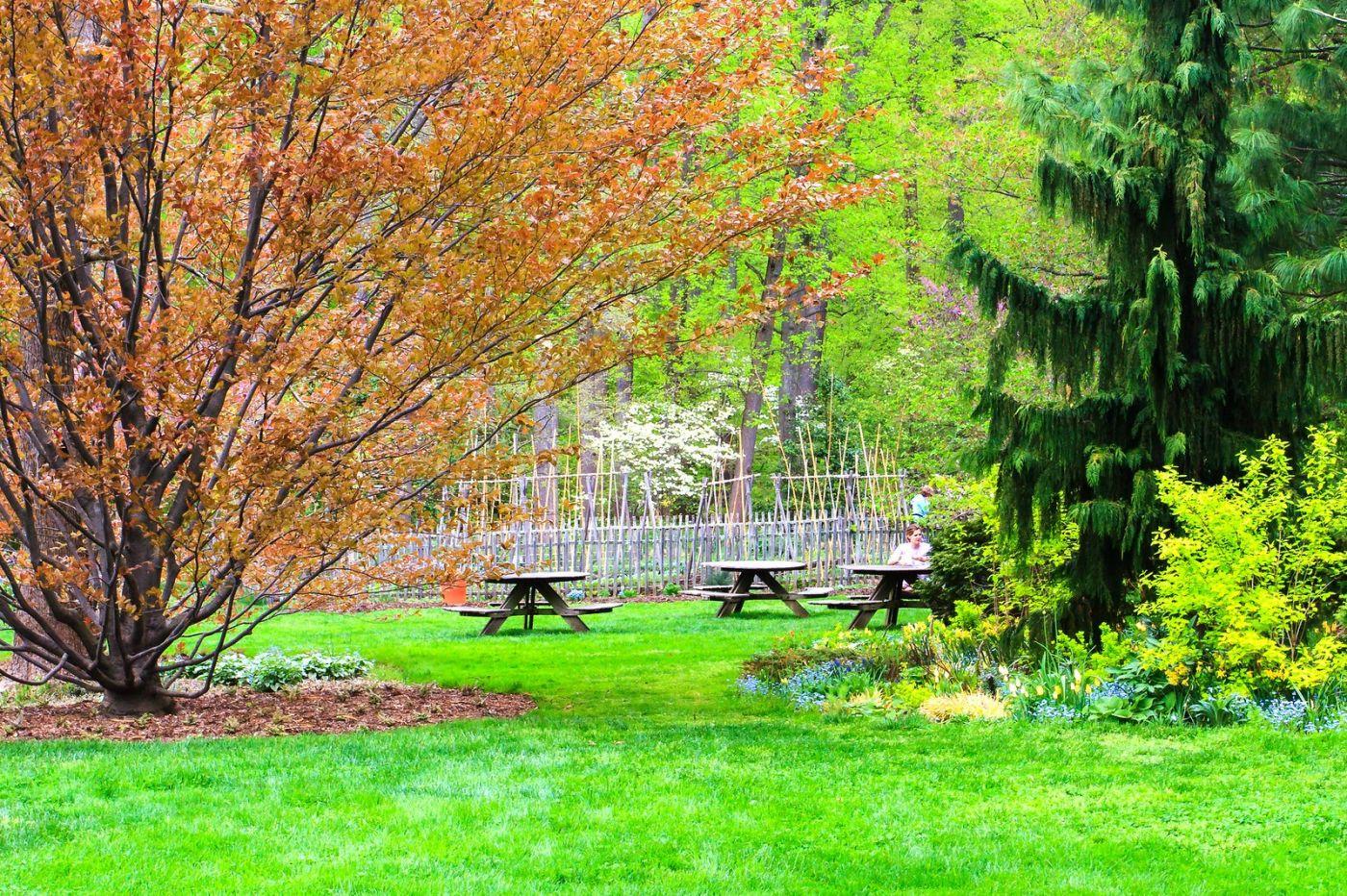 Chanticleer花园,季季有色彩_图1-32