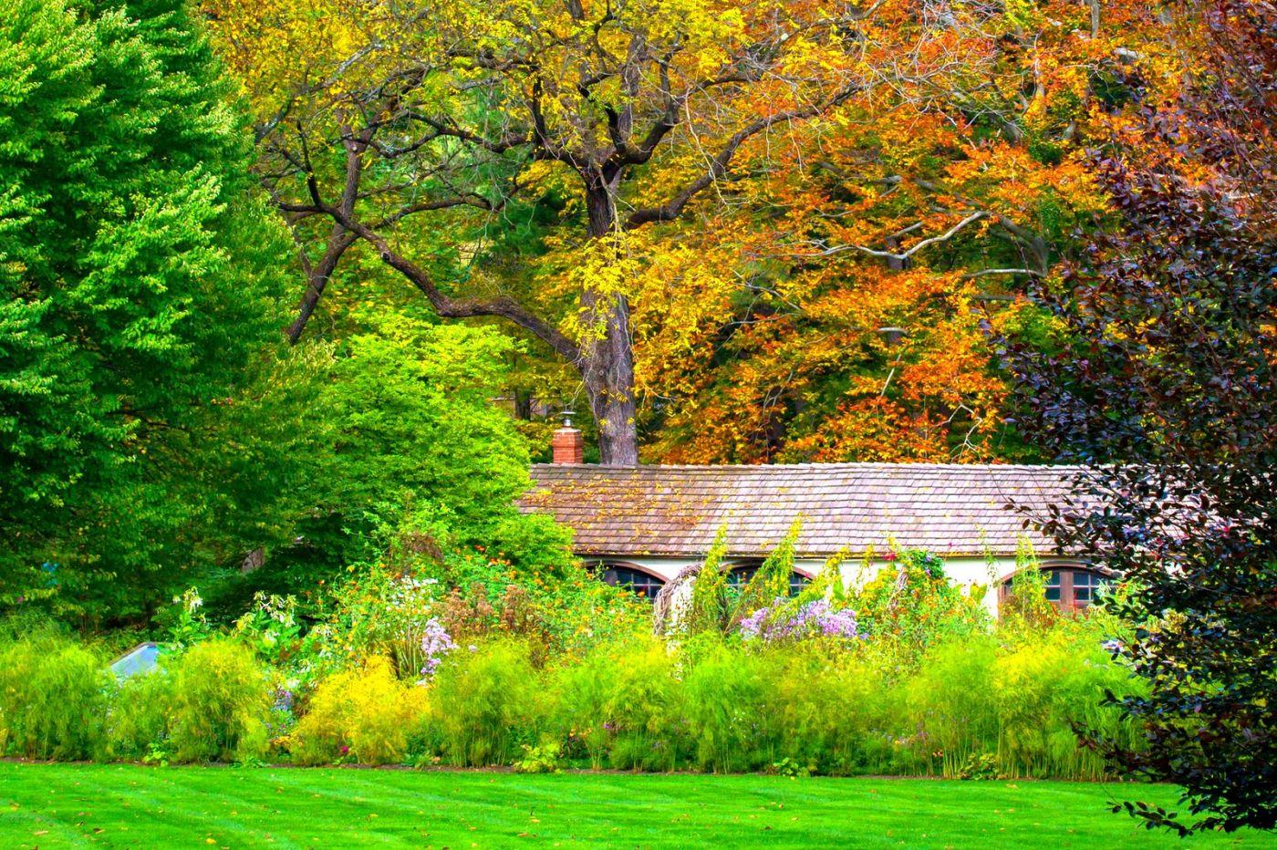 Chanticleer花园,季季有色彩_图1-34