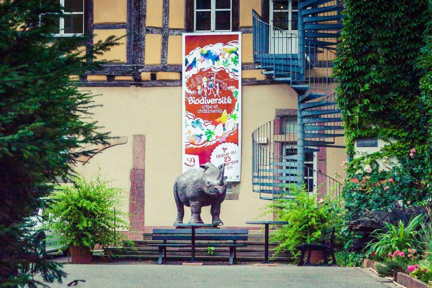 法国科尔马(Colmar),街口路拍_图1-12