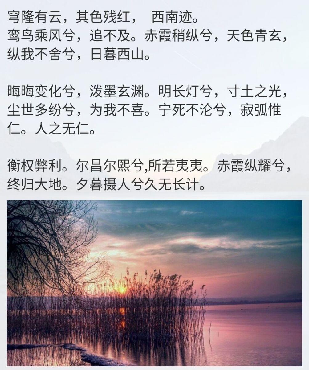 追寻_图1-1