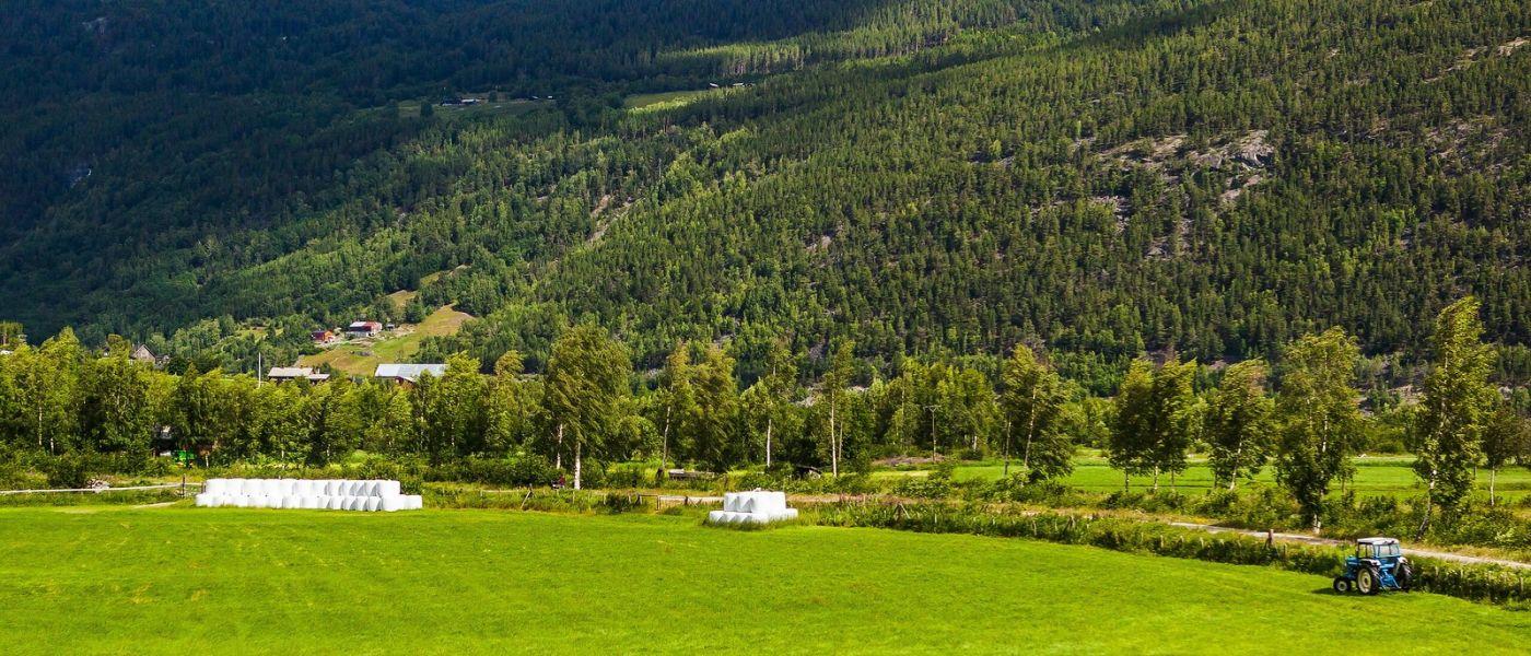 北欧风光,山间的别墅_图1-21