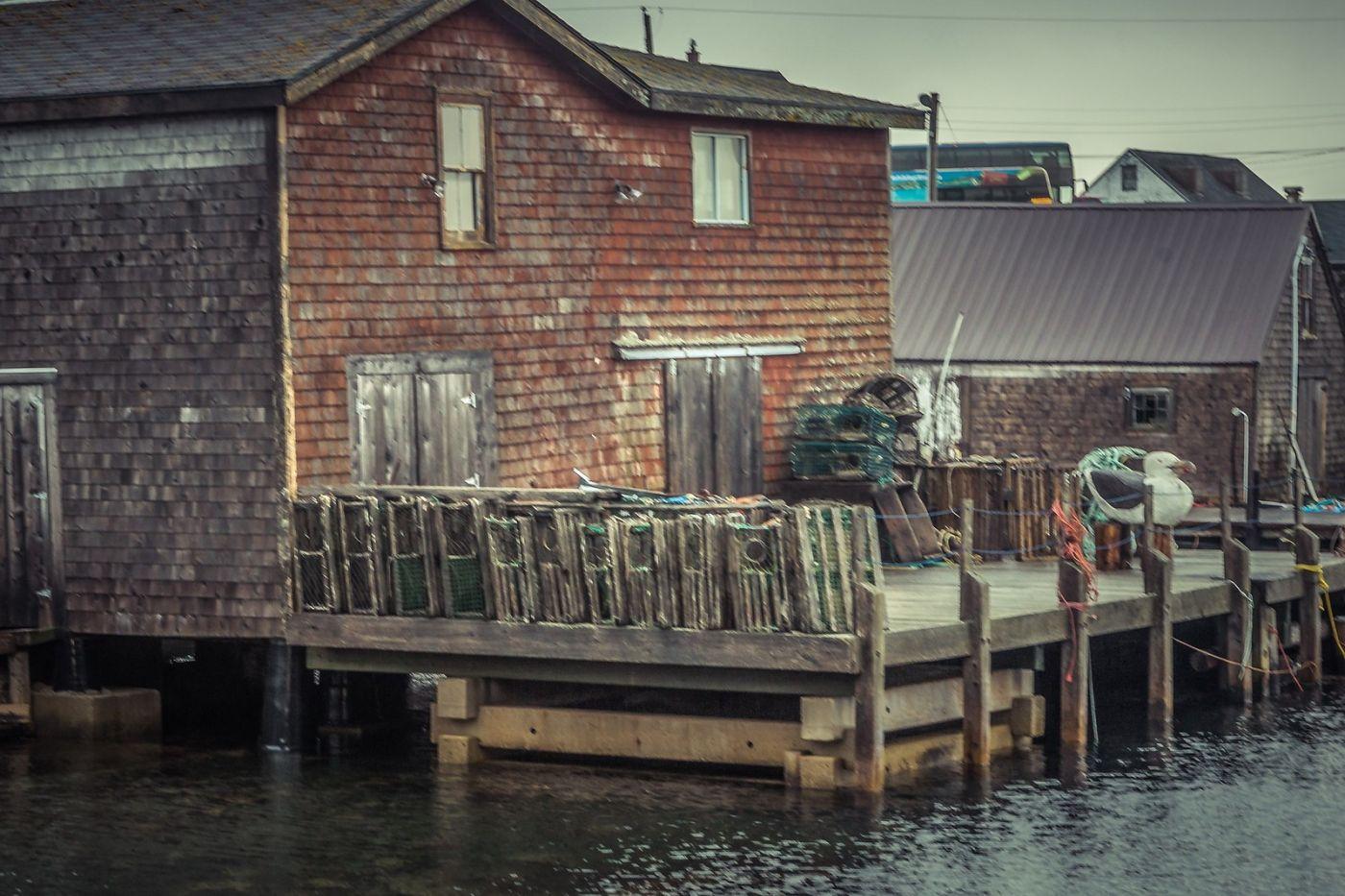 加拿大佩吉海湾(Peggys Cove),小鱼港见闻_图1-2