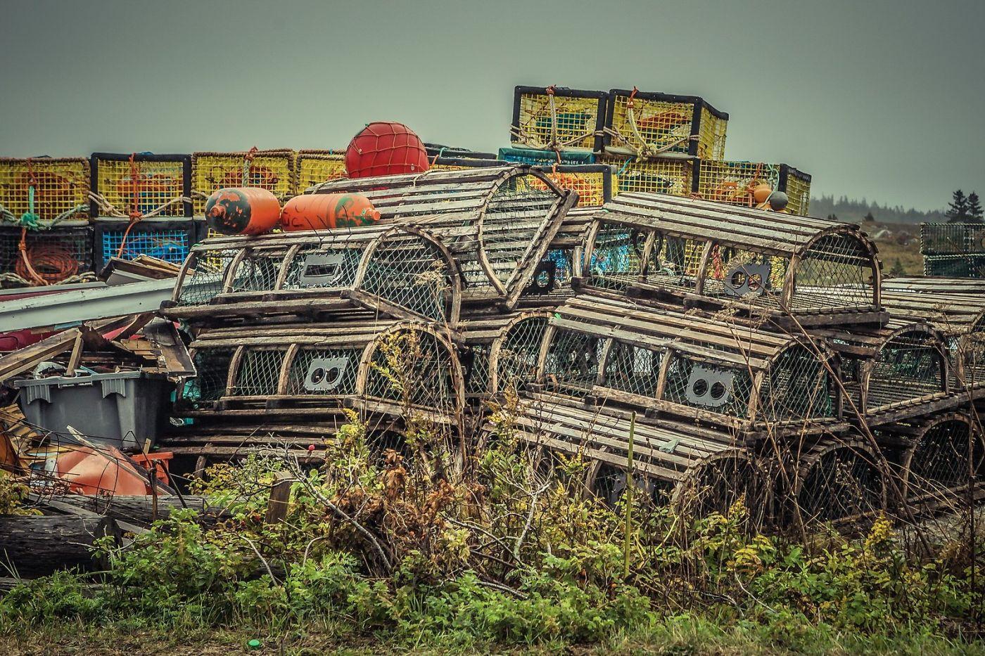 加拿大佩吉海湾(Peggys Cove),小鱼港见闻_图1-17