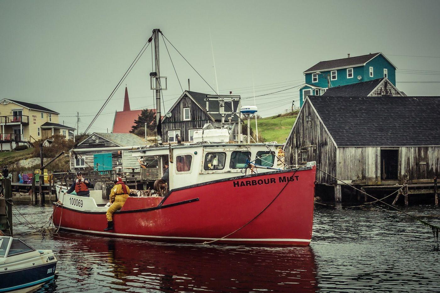 加拿大佩吉海湾(Peggys Cove),小鱼港见闻_图1-22