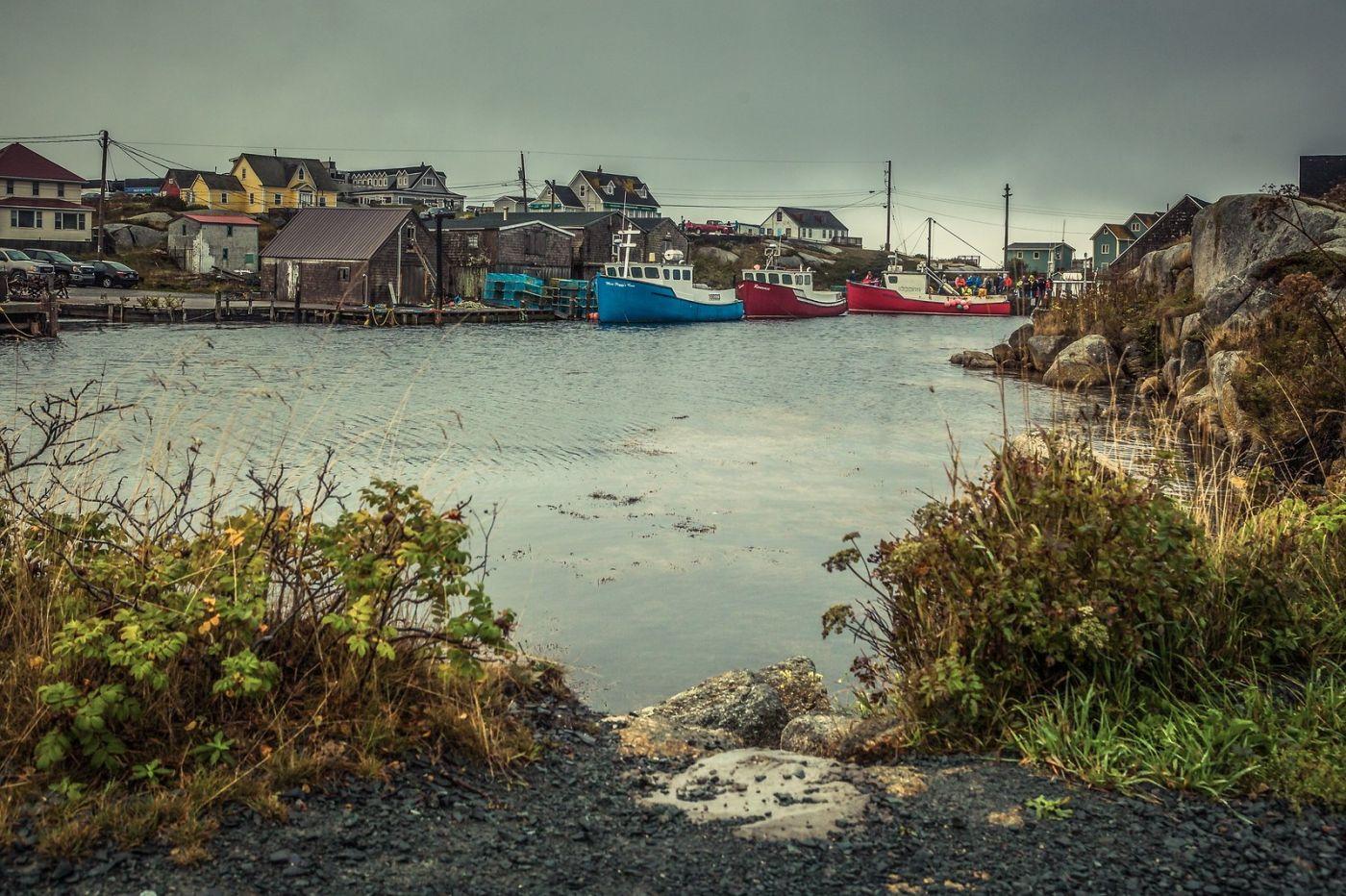加拿大佩吉海湾(Peggys Cove),小鱼港见闻_图1-27