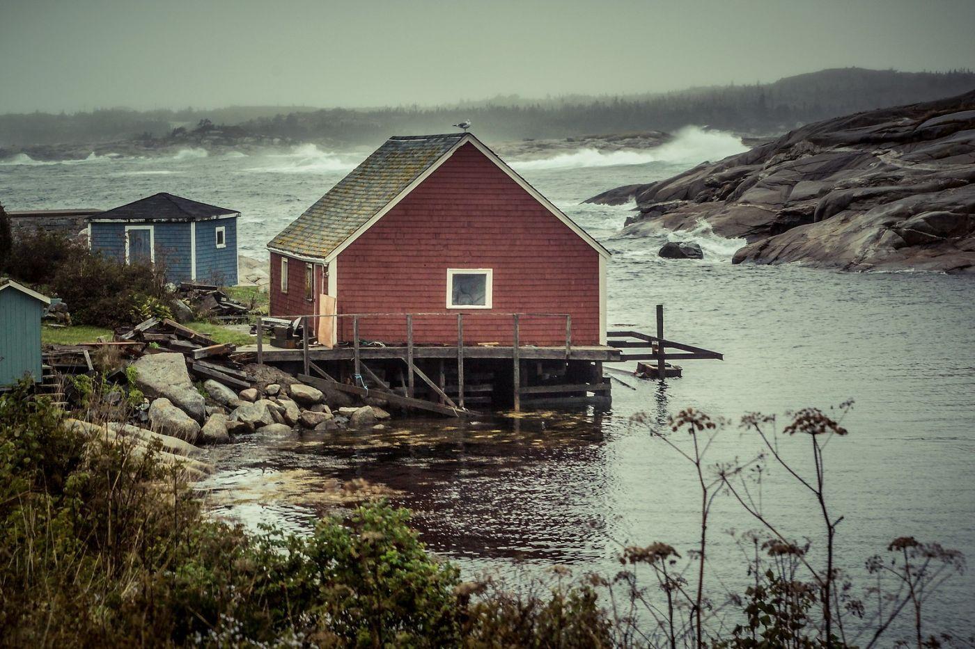 加拿大佩吉海湾(Peggys Cove),小鱼港见闻_图1-25