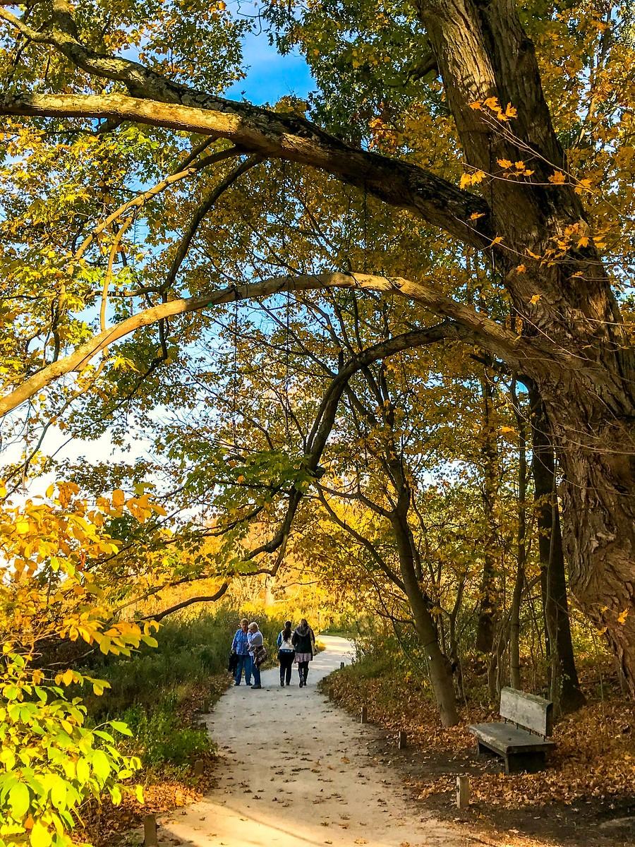 宾州长木公园,春去秋来_图1-21