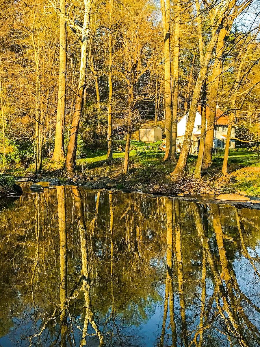 宾州长木公园,春去秋来_图1-17