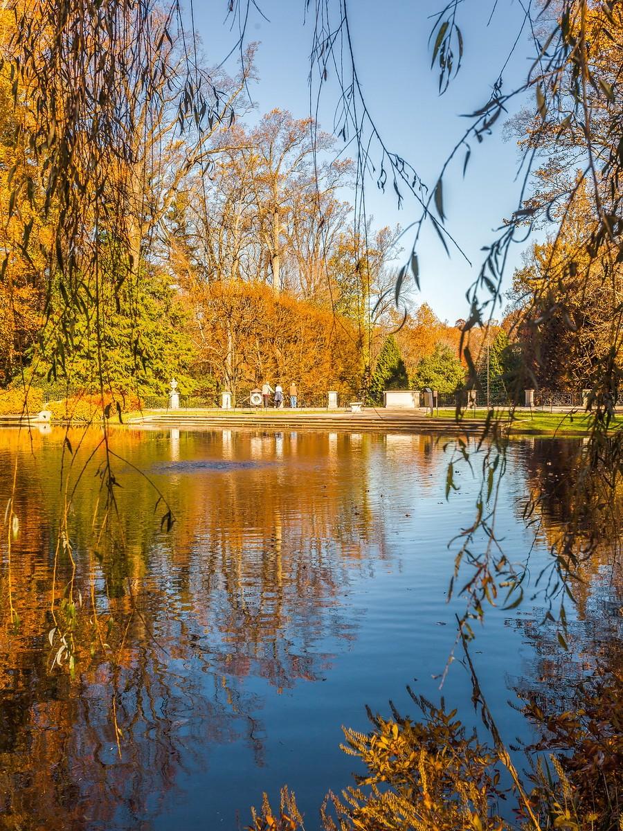 宾州长木公园,春去秋来_图1-15