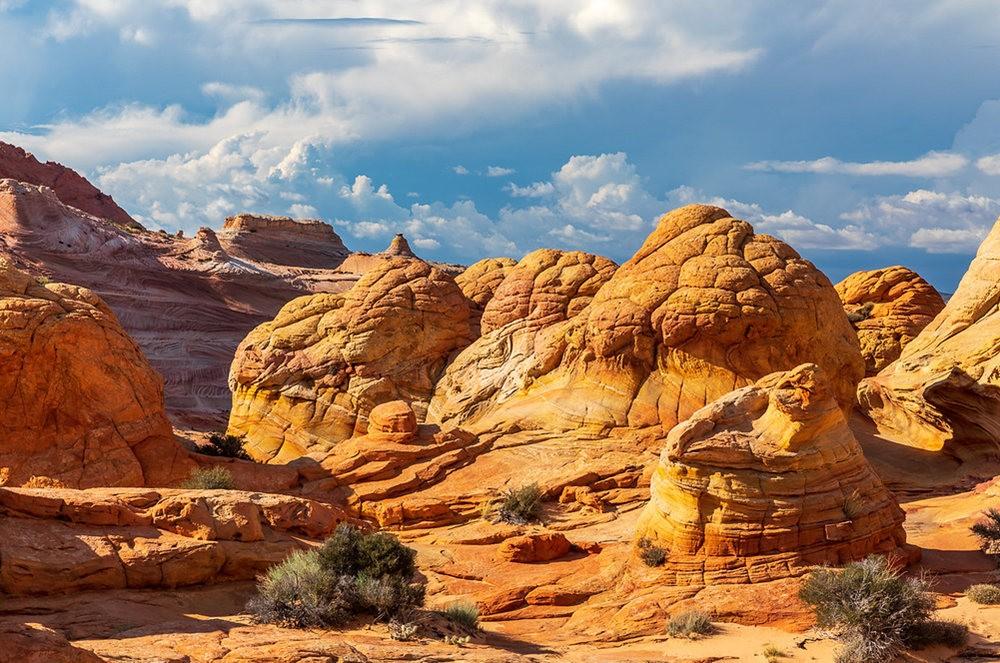 美国最美的地质奇观---浪波_图1-23