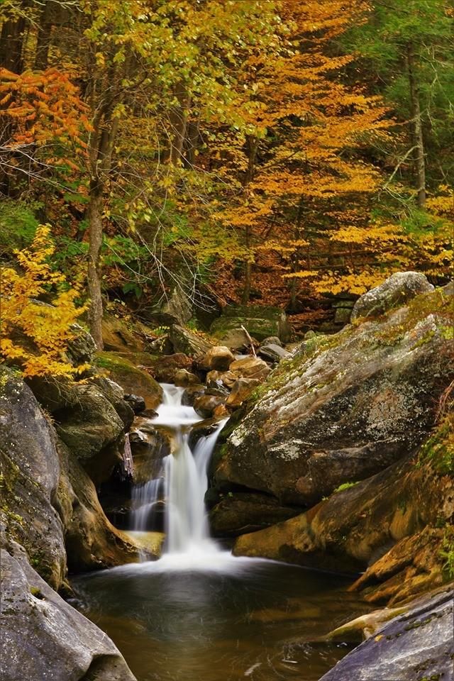 【爱摄影】 Kent Fall State Park_图1-11
