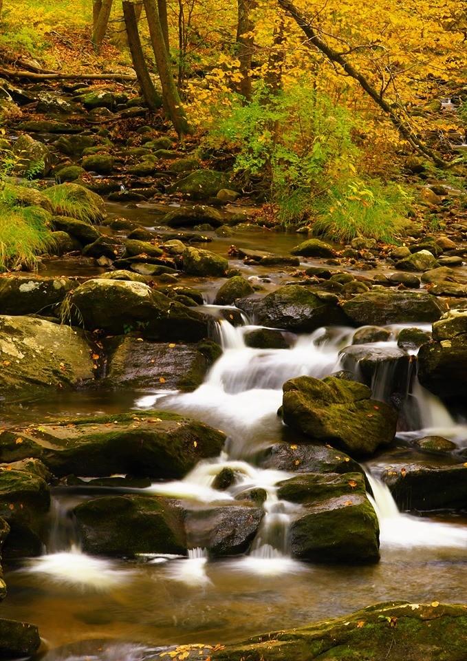 【爱摄影】 Kent Fall State Park_图1-13
