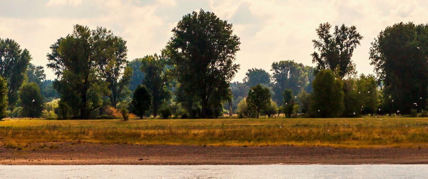畅游莱茵河,一路的风景_图1-39