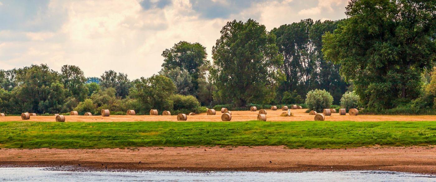 畅游莱茵河,一路的风景_图1-36