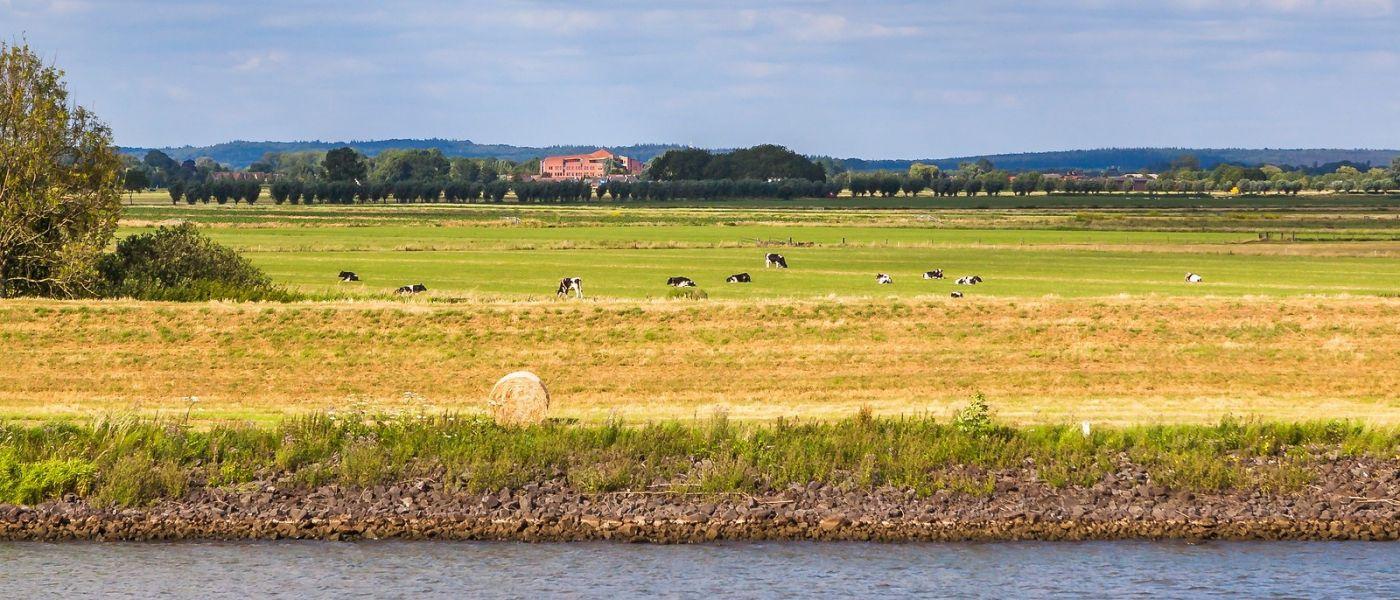 畅游莱茵河,一路的风景_图1-7