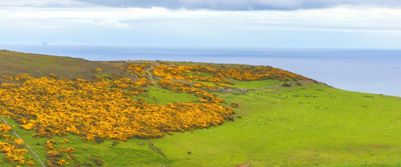 苏格兰美景,自然景色看不完_图1-31