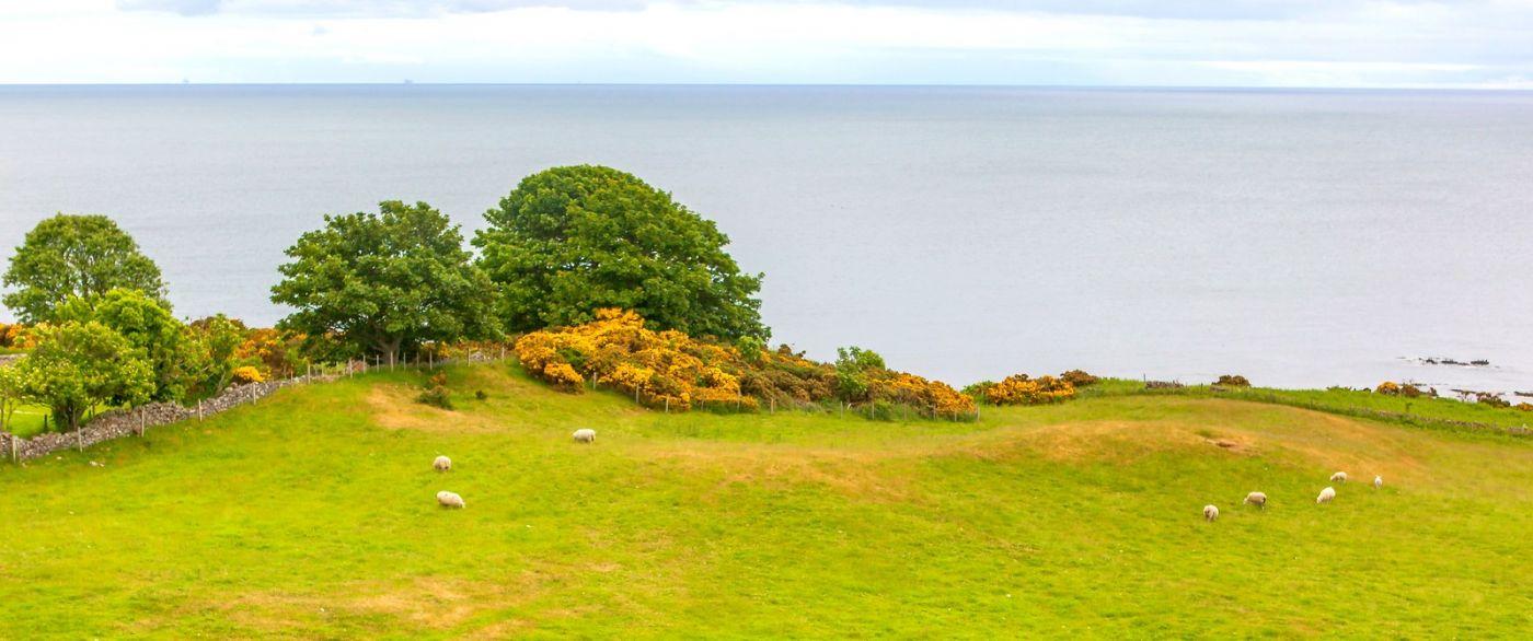 苏格兰美景,自然景色看不完_图1-34