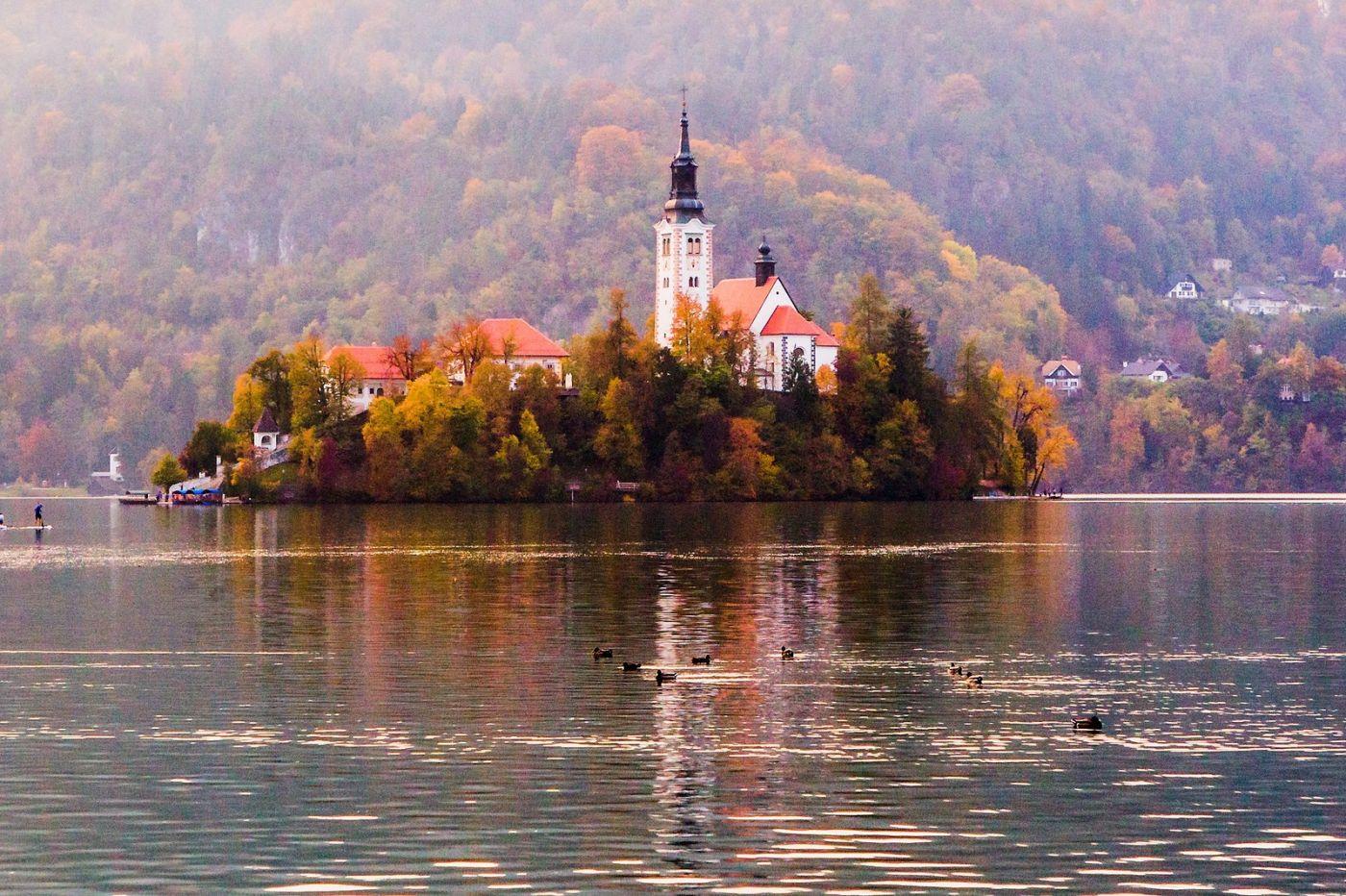 斯洛文尼亚布莱德湖(Lake Bled),湖中教堂_图1-1