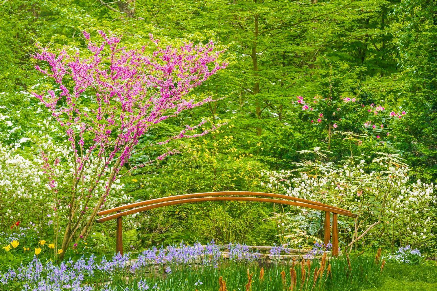 Chanticleer花园,有梦想的季节_图1-18