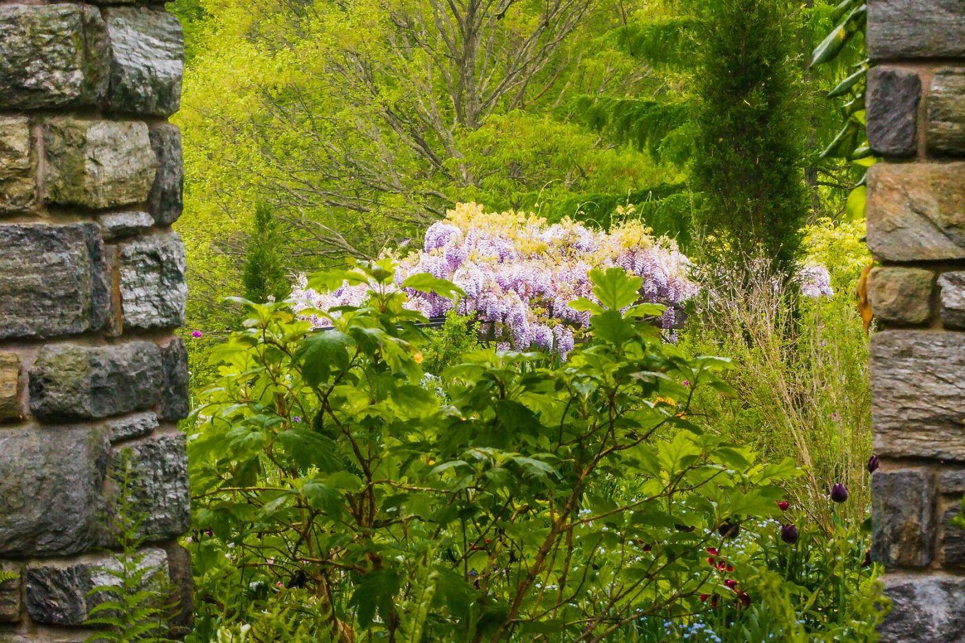 Chanticleer花园,有梦想的季节_图1-19