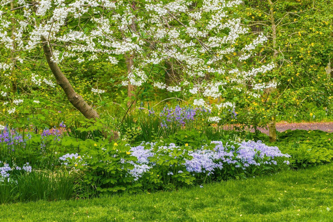 Chanticleer花园,有梦想的季节_图1-25