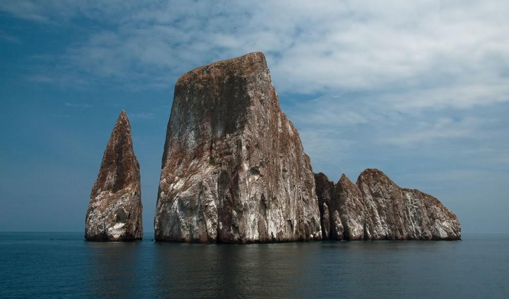 加拉帕戈斯群岛---厄瓜多尔的世界文化遗产_图1-14