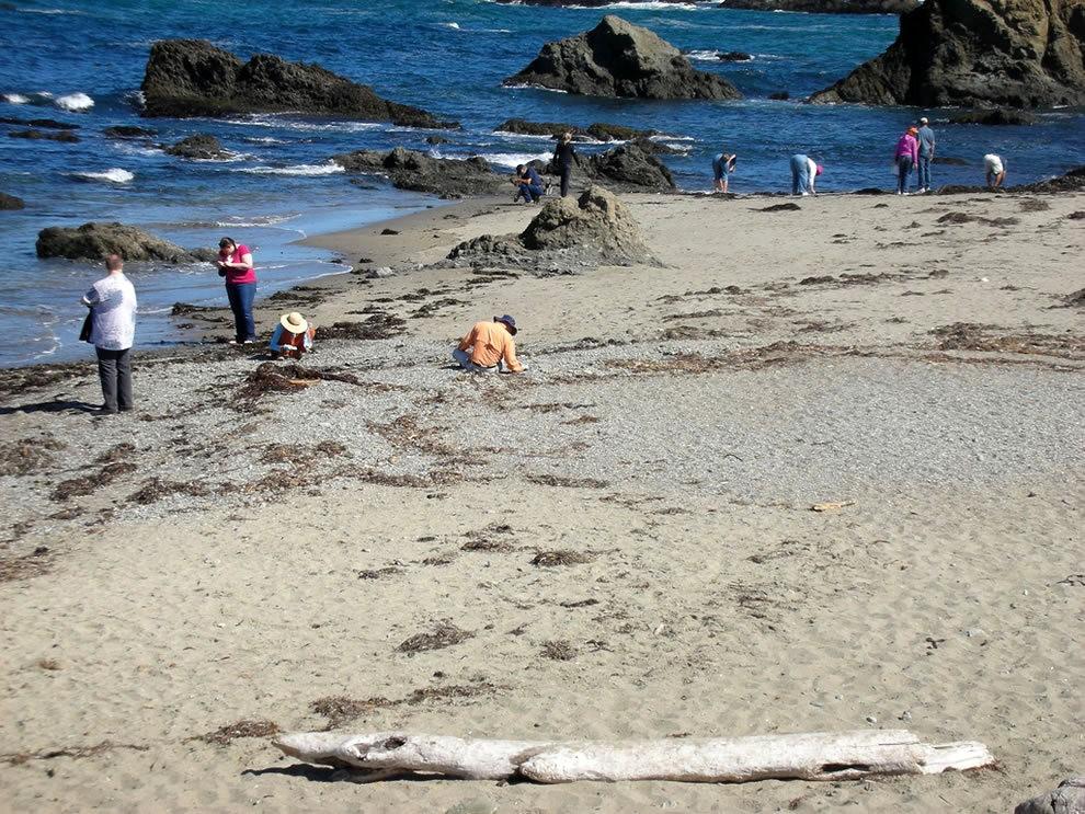 麦基里奇州立公园之----玻璃海滩_图1-19