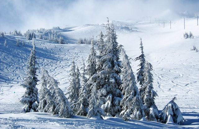 冬在胡德山_图1-1