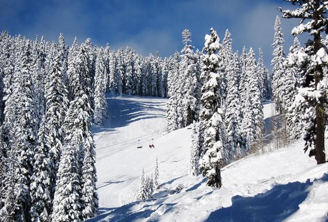冬在胡德山_图1-4