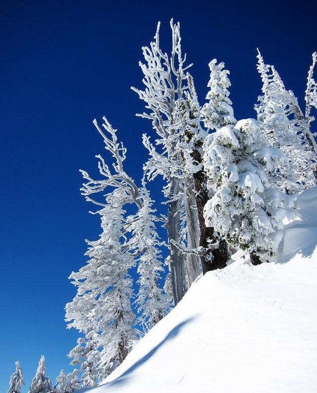 冬在胡德山_图1-9
