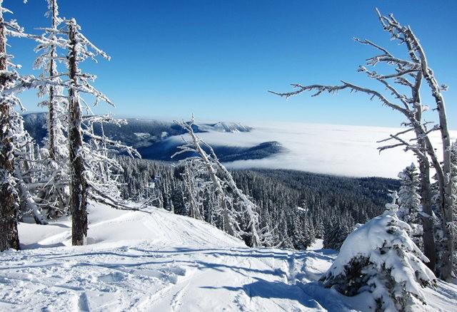 冬在胡德山_图1-14